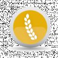 Risques agricoles